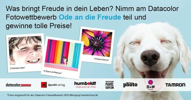 Grafik mit 3 Polaroids und lachendem weißen Hund sowie Schriftzug zum Datacolor Fotowettbewerb Ode an die Freude
