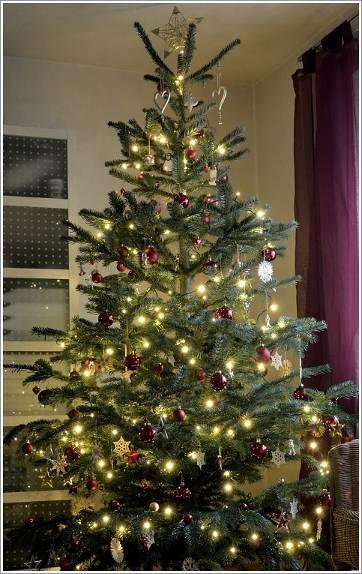empfehlung wie kommt die w ste unter den weihnachtsbaum netzwerk fotografie nikon community. Black Bedroom Furniture Sets. Home Design Ideas