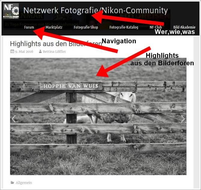 Das neue Portal der Community: Die Navigation